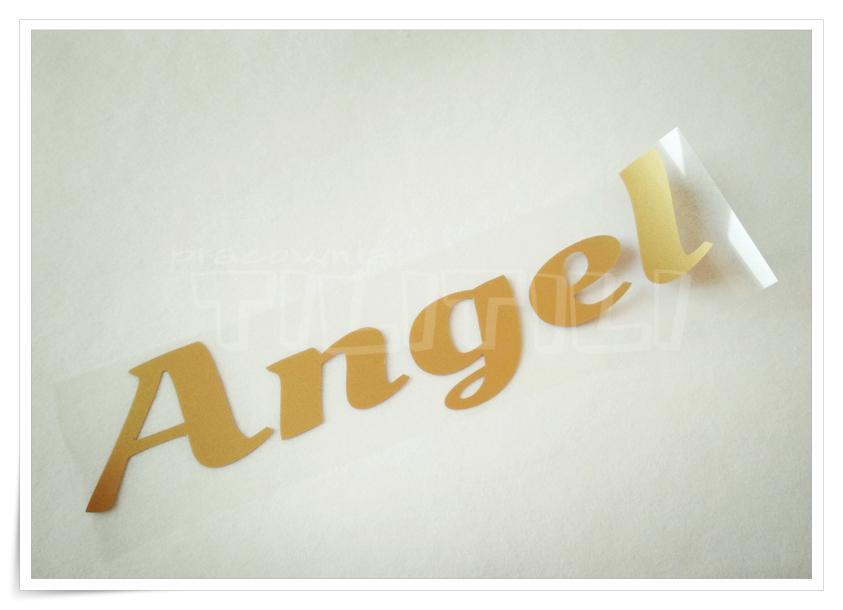 Angel ( 5x19 )